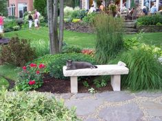 love the bench with the garden behind it