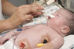 Peek-a-boo ICU: NICU Nursing - It's more than just a job
