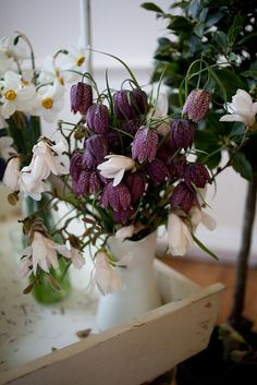 Snake's head fritillary and magnolia arrangement