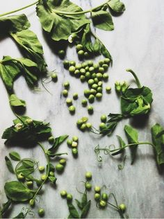 Love this > iPhoneography Peas / Nicole Franzen Photography