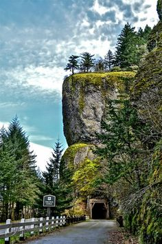 Oneonta Gorge, in the Columbia River Gorge (Oregon)
