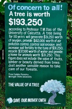 The worth of a tree is worth reading