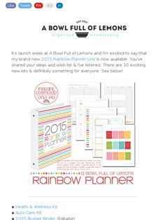The 2015 Rainbow Planner Printables. <3 #printables #homemanagementbinder