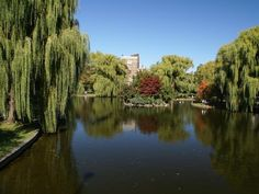 Boston Common is the anchor for the Emerald Necklace, a system of connected parks that winds through many of the city's neighborhoods. >> http://www.frontdoor.com/photos/popular-landmarks-and-attractions-in-boston?soc=pinterest