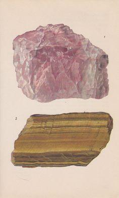 rose quartz and tiger's eye / vintage print