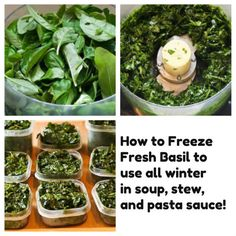 How to Freeze Fresh Basil; I've been using this method for years and years now and I love using the frozen basil for a burst of flavor in winter soups or stews. [from Kalyn's Kitchen]