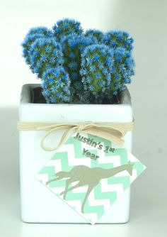 Desert Gems are perfect hostess gifts or place cards!