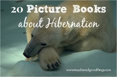 20 Picture Books About Hibernation - Have fun while learning about hibernation! www.teachersofgoodthings.com