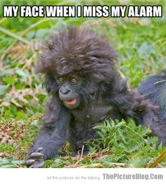 My face when I miss my alarm HAHAHAA!!!