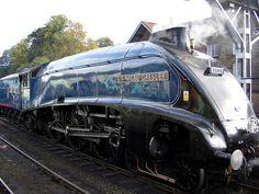 Sir Nigel : train