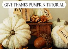 Nice tutorial for transforming craft store pumpkins from StudioJRU