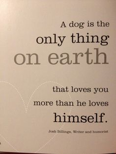 dog quotes | Tumblr