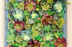 Faux Succulent Garden DIY