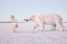 Photographer Jeremy Blincoe   Polar Bear!