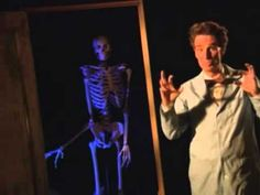 ▶ Bill Nye The Science Guy - Bones and Muscle (Full Episode) - YouTube