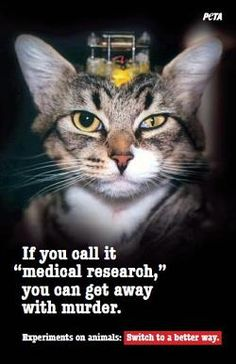 Animal Research Is Murder!