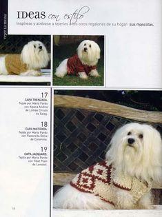 modelo de ropa para perros