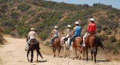 Sunset Ranch Hollywood |  3400 North Beachwood Dr L A, CA 90068 (323) 469-5450 Take a 1 or 2 Hour guided horseback tour through the hills of Griffith Park.  From this 5,000 acre park in the heart of Los Angeles you'll see the famous HOLLYWOOD sign, Griffith Observatory & Downtown LA.  Make a reservation or just come on up and we'll take you out.  Come on up for: Dinner Rides to Viva Fresh Restaurant BBQ Rides Lunch Rides Riding Lessons Mt. Hollywood Rides in the evening Kid's Parties Boarding