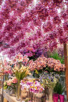 Stephane Chapelle flower shop, Paris.