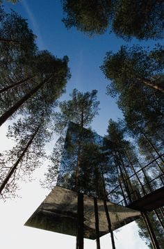 The mirrored exterior of this suite at Treehotel in Harads, #Sweden reflects the forest on all six sides. // Slideshow: World's Coolest Tree-House Hotels