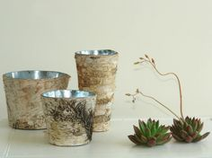 Birch Bark Wedding Vases
