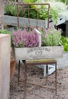 wooden boxes and lavender