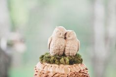 adorable owl cake toppers