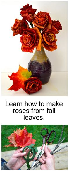 DIY Project: Roses from fall leaves.