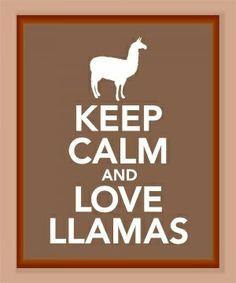 Llamas!