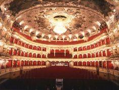 Checking the opera schedule in Prague!