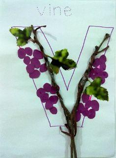 V is for vine  PreK ABC Book