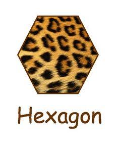 Animal print Shape cards for a jungle themed classroom