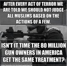 food for thought, guns, judges, gun rights, truth, polit, quot, gun control, 2nd amend