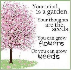 Nurture your garden...