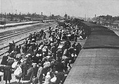 LLegada de un convoy de judíos a la terminal ferroviaria de Auschwitz-Birkenau. Al fondo a izquierda y derecha las chimeneas de los crematorios II y III, junto a las que se encontraban las cámaras de gas. Según el superviviente Primo Levi, en menos de 10 minutos todos los que eramos hombres útiles estuvimos reunidos en un grupo. Lo que fue de los demás, de las mujeres, de los niños, de los viejos, no pudimos saberlo...casi nadie pudo despedirse de ellos. Los vimos...en el extremo del andén...des
