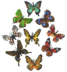 Butterfly Rainbow of Northern Hemisphere Pattern by Katherina Kostinsky at Bead-Patterns.com bead butterfli, butterfli rainbow