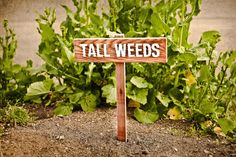 {so funny!} TALL WEEDS Yard or Garden Humor Sign, Painted & Oil Sealed Cedar Wood: Hand Routed.