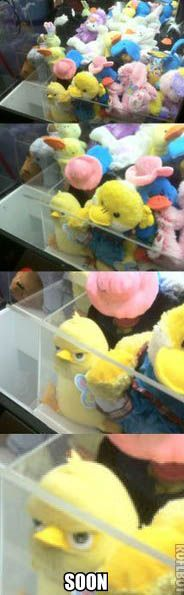 evil-toy-duck