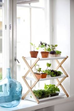 clothes rack plant stand - would need some kind of screw to secure the clothes rack (who hasn't seen one of those collapse before?)
