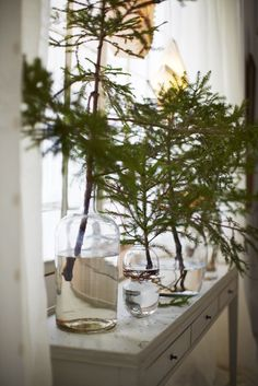 Create a simple and natural Christmas display using glass bottles and branches from your Christmas tree.