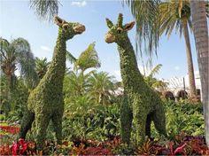 Living Art: Busch Gardens Topiaries | Busch Gardens Tampa