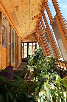 Growing food and plants in an earthship.