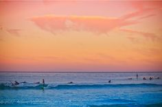Surf's Up in Malibu