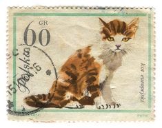 Poland Postage Stamp: Cat by karen horton, via Flickr