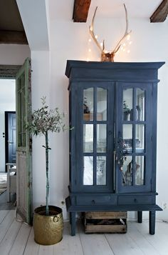 cupboard with antlers above:) mirrored doors on blue painted armoire cabinet, olive tree in brass bucket lots of bohemian eclectic in paired back simplicity