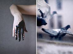 by Emmanuelle Brisson