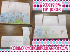 an ecosystems flipbook for decomposers, producers, consumers