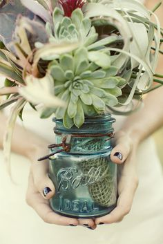 Succulent arrangement in vintage Ball jar