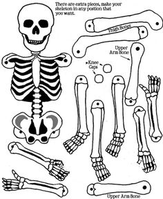 """""""Printables"""" Skeleton - Use split pin fasteners (otherwise known as brads) and your skeleton will be able to move and dance)."""