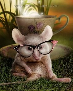 New Glasses by Cindy Grundsten Ad
